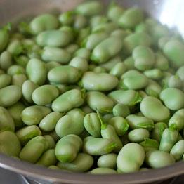 Pic of Easy broad bean salad