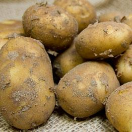Pic of New potatoes with buttermilk and chive dressing