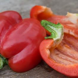 Pic of Grilled pepper salad