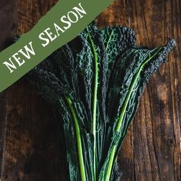 Cavolo nero (black kale) 300g