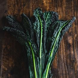 Cavolo nero (black kale)