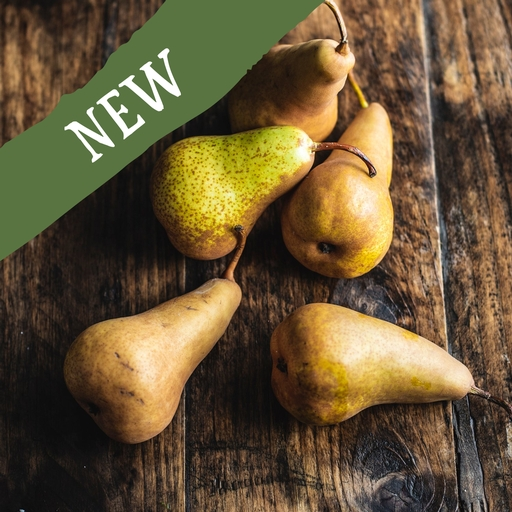 Bosc pears 750g