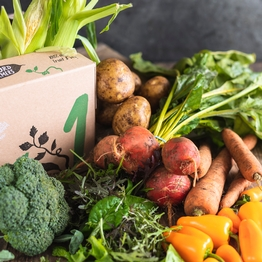Seasonal organic veg box - small