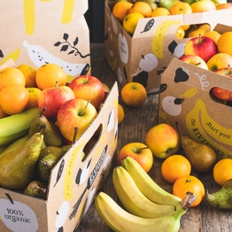 Organic fruit box - bumper