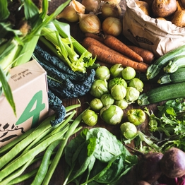 Seasonal organic veg box - bumper