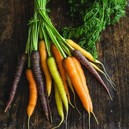 Bunched rainbow carrots