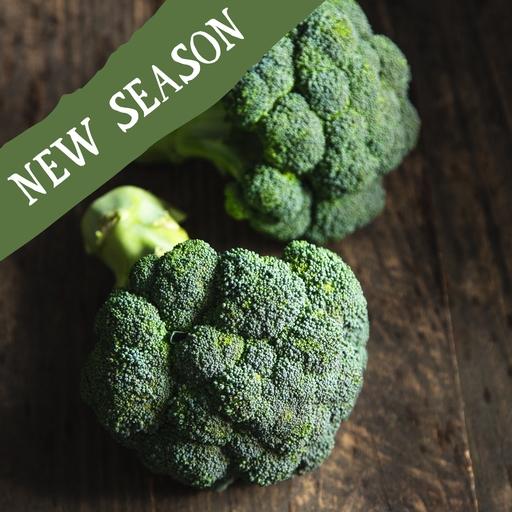 Calabrese broccoli 500g