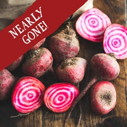 Chioggia beetroot 800g