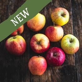 Cox's apples 750g