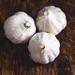 Dried garlic 3 bulbs