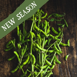 Bunched edamame beans