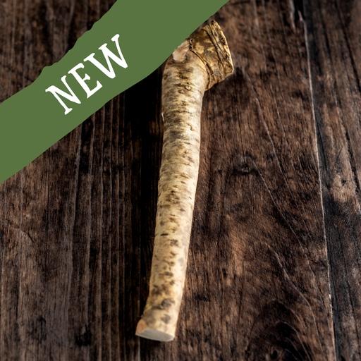Horseradish x1