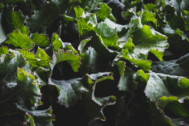 Hungry gap kale