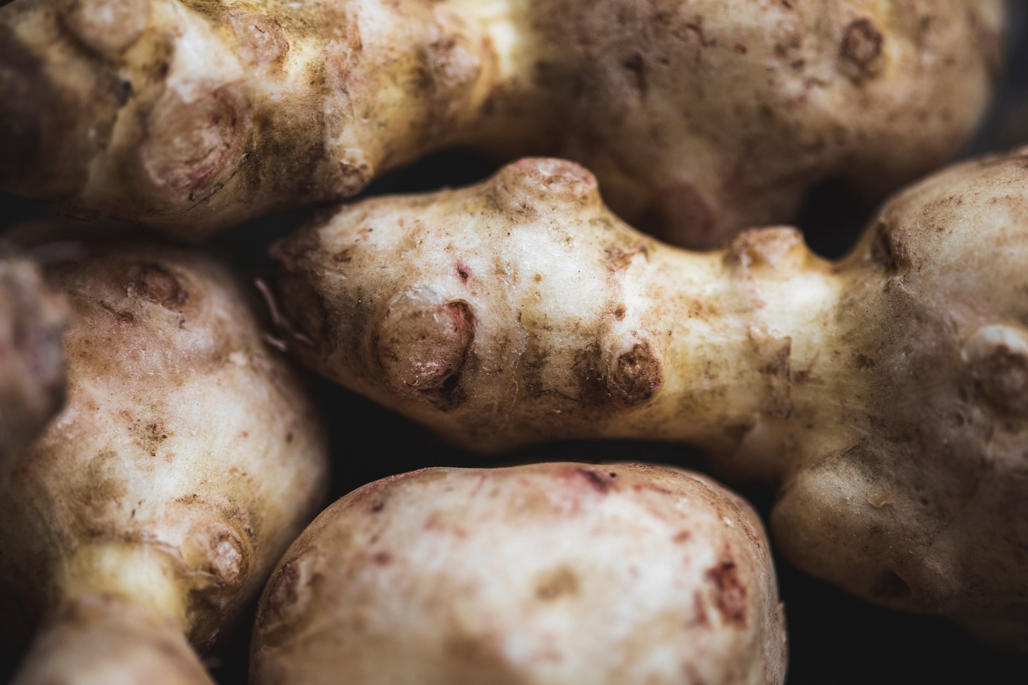 Jerusalem Artichokes 500g Riverford