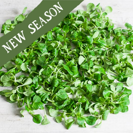 Lamb's lettuce 150g