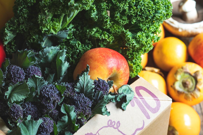Seasonal organic fruit & veg box plus meat – large