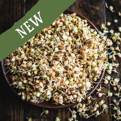 Lentil sprouts 200g