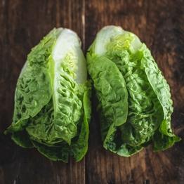 Little gem lettuce x2