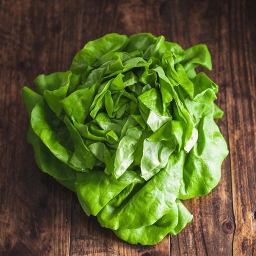 Green oakleaf lettuce