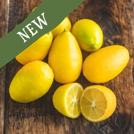 Limequats 200g