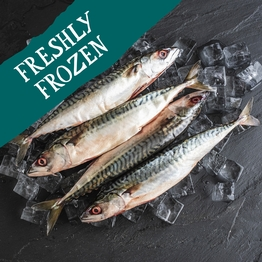 Wild whole mackerel 600g
