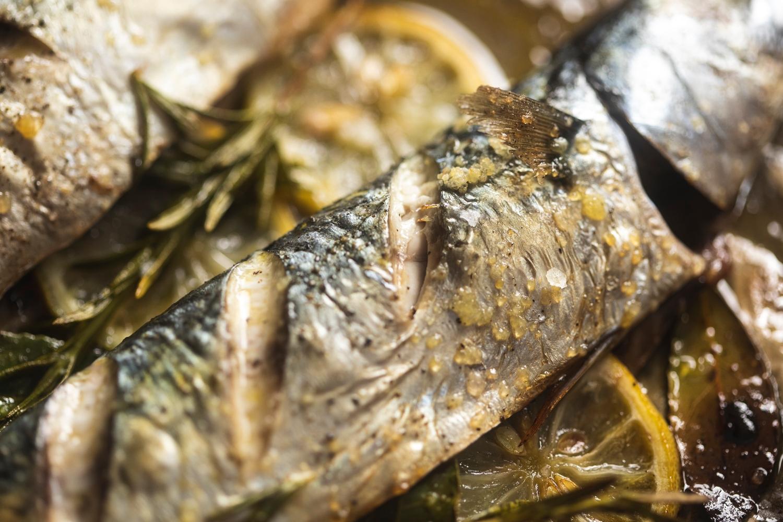 Wild whole mackerel