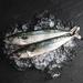 Wild whole mackerel 600g