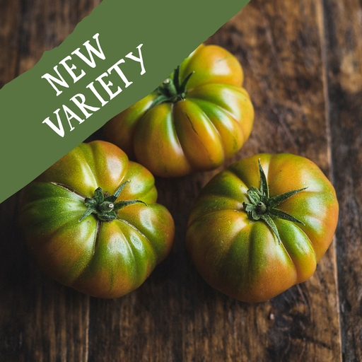 Marmande tomatoes 480g