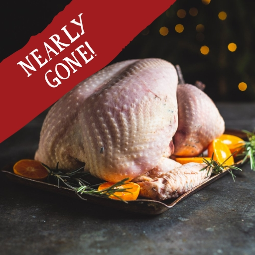 Turkey medium feeds 9-10