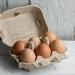 Organic eggs mixed x6