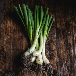 Bunched onions