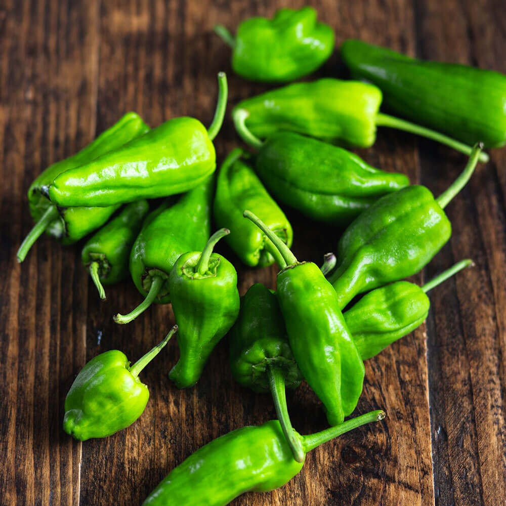 Image of Padron pepper being produced