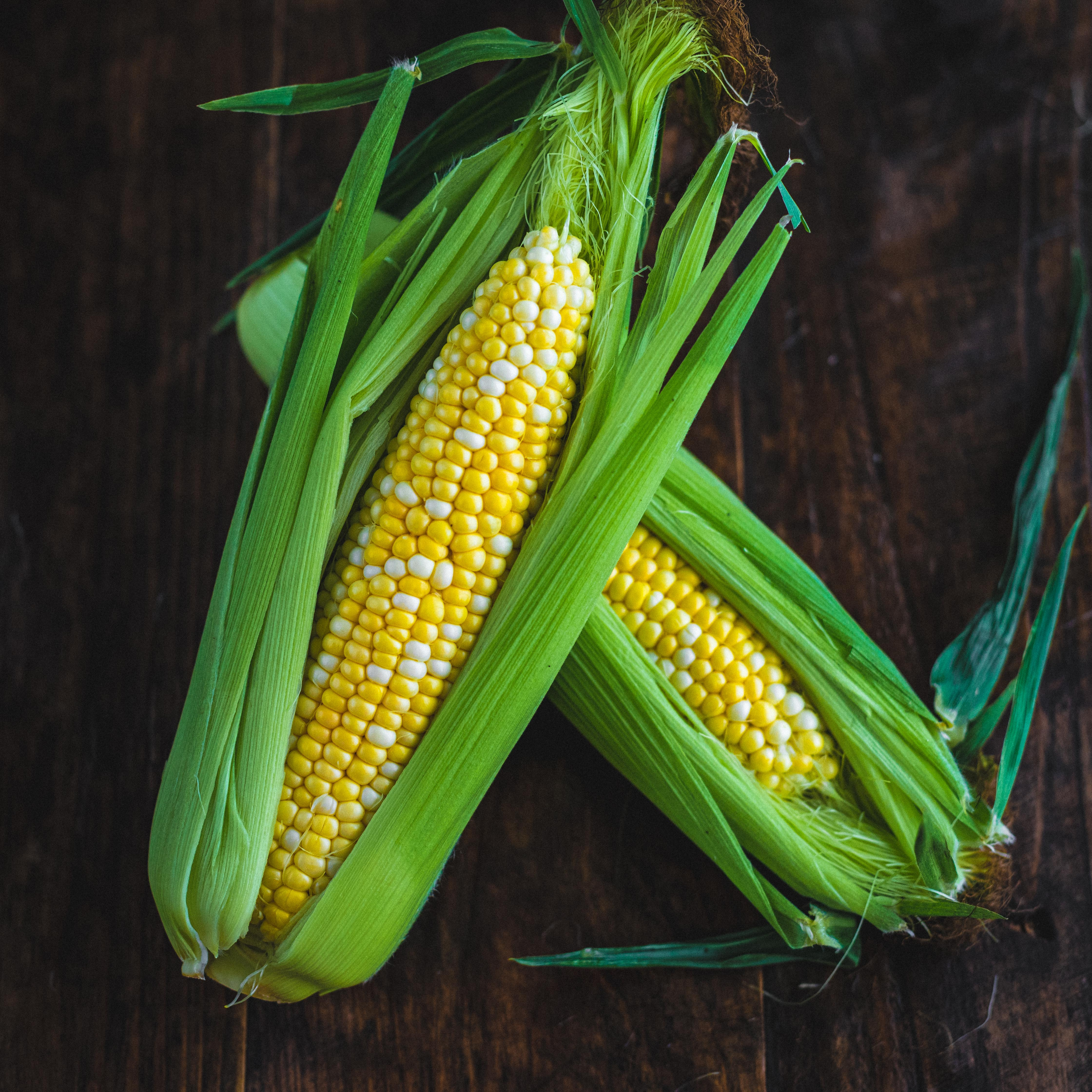 Picture of Speckled sweetcorn