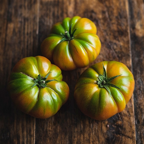 Picture of Marmande tomatoes