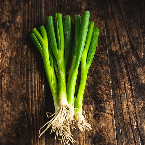 Picture of Spring onions