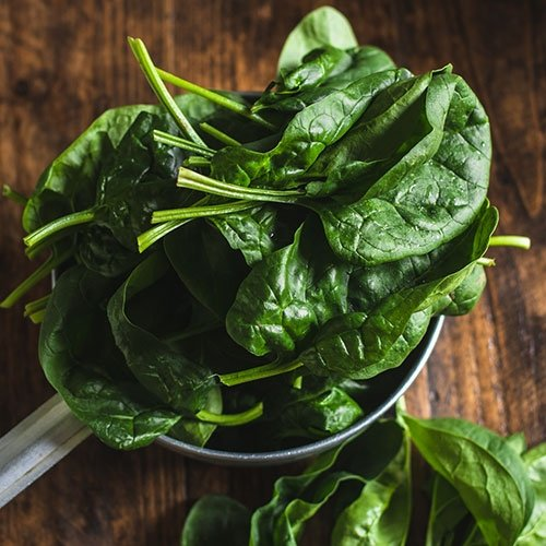 Picture of Perpetual spinach