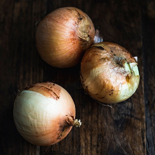 Picture of Barbosa onions