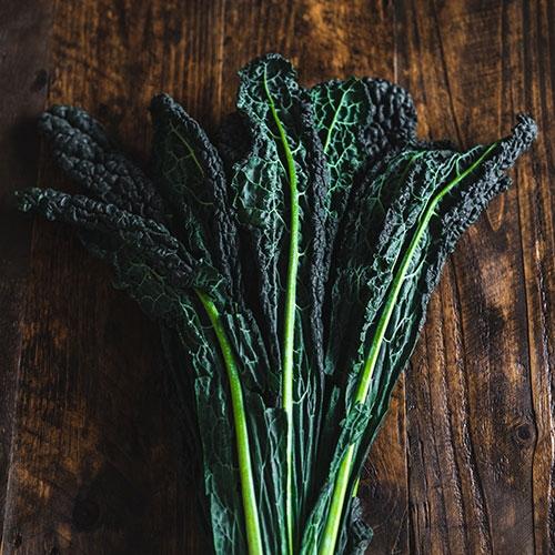 Picture of Cavolo Nero (black kale)