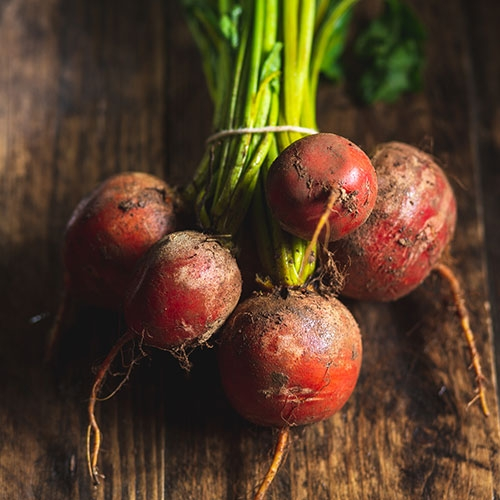 Picture of Golden beetroot