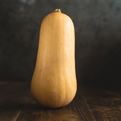 Picture of Butternut squash