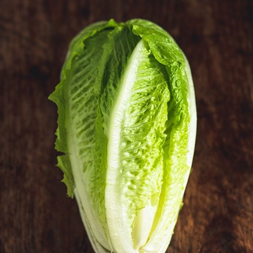Picture of Cos/Romaine