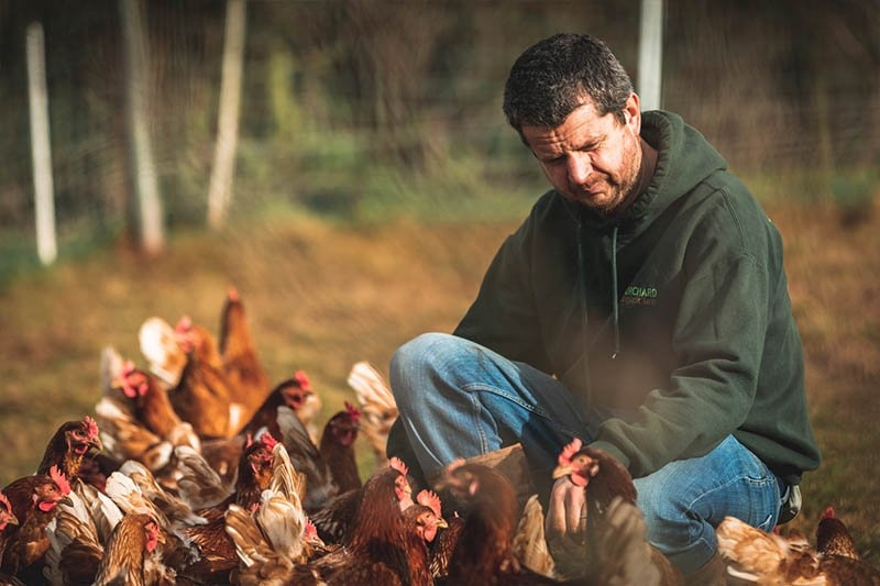 Jerry tending to his hens
