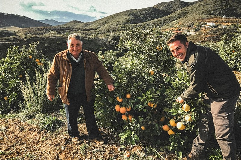 Premium Organics are group of Spanish farmers specialising in citrus fruits with stunning groves of grapefruits, oranges, clementines and lemons.