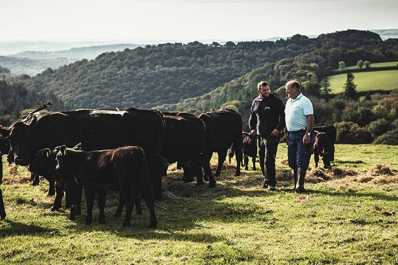The Mortimores with their herd of cows on their Dartmoor farm