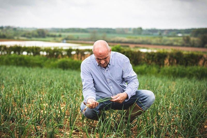 Nigel Venni inspecting the organic spring onions growing on Sacrewell Farm in Cambridgeshire.