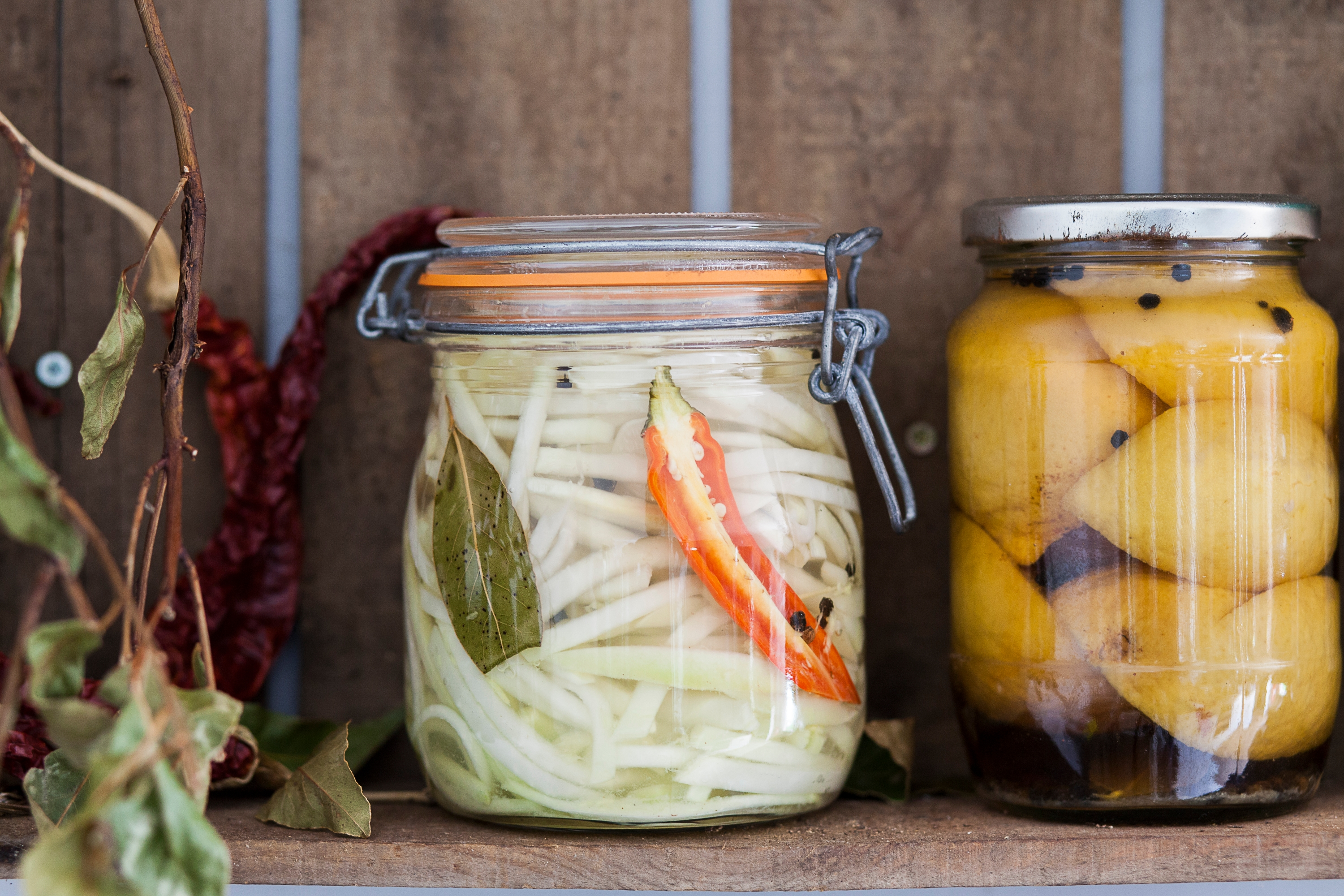 Pickled Kohlrabi Recipe Riverford