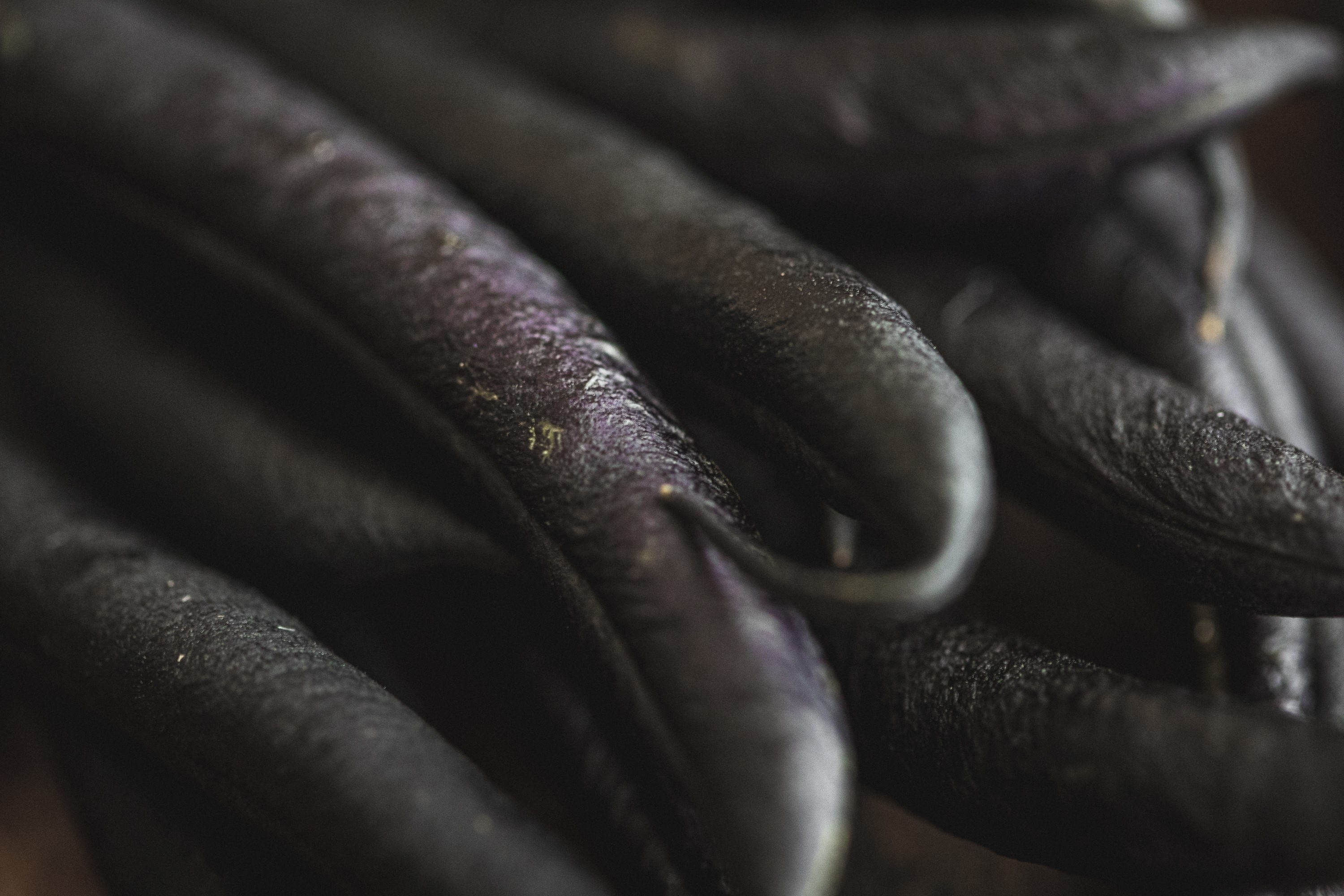 Purple French beans
