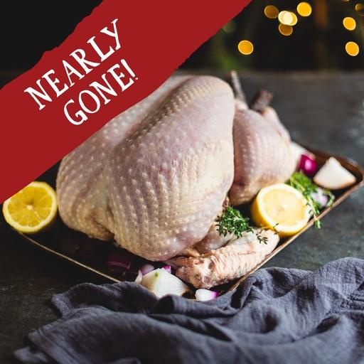 Turkey small feeds 8-9