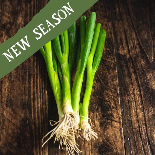 Spring onions 125g