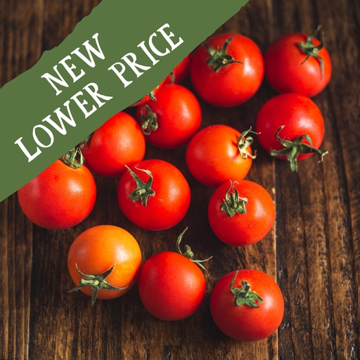 Tomatoes 480g